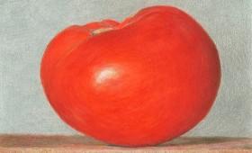Grainger Tomato